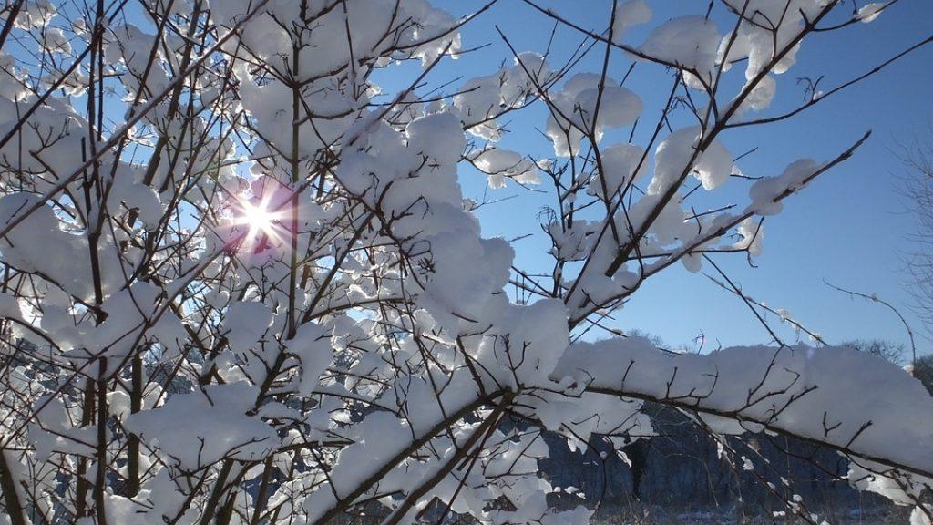 winter-2338766_960_720